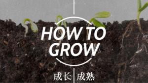 核心课程:成长成熟