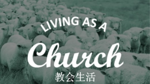 核心课程:教会生活